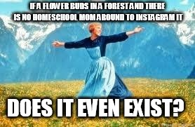 Look At All These Meme | IF A FLOWER BUDS IN A FOREST AND THERE IS NO HOMESCHOOL MOM AROUND TO INSTAGRAM IT DOES IT EVEN EXIST? | image tagged in memes,look at all these | made w/ Imgflip meme maker