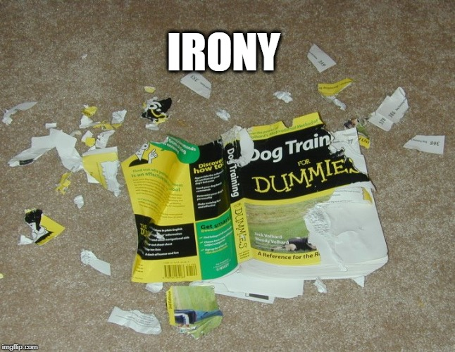 IRONY | image tagged in irony,dogs,for dummies,ha ha | made w/ Imgflip meme maker