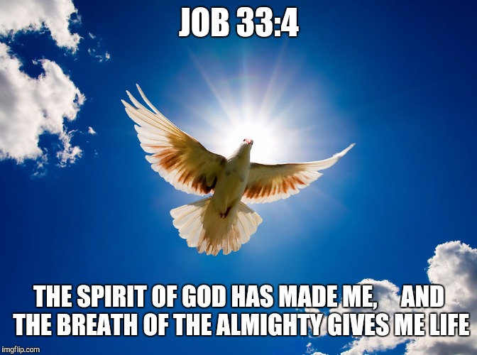 The Spirit of God.  | JOB 33:4 THE SPIRIT OF GOD HAS MADE ME,     AND THE BREATH OF THE ALMIGHTY GIVES ME LIFE | image tagged in god,jesus christ,holyspirit,inspirational quote,love,unity | made w/ Imgflip meme maker