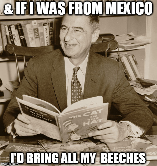 & IF I WAS FROM MEXICO I'D BRING ALL MY  BEECHES | made w/ Imgflip meme maker