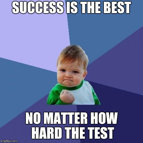 Success Kid Meme | SUCCESS IS THE BEST NO MATTER HOW HARD THE TEST | image tagged in memes,success kid | made w/ Imgflip meme maker