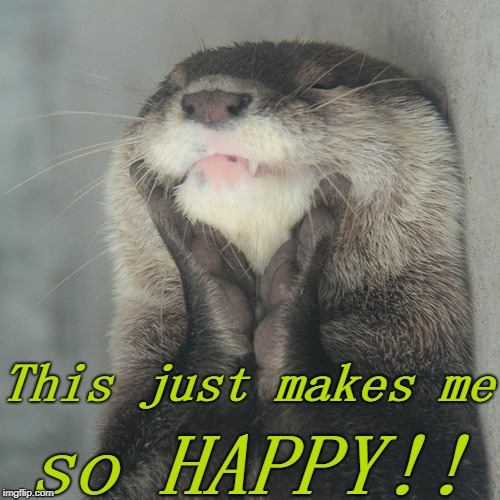 This just makes me so HAPPY!! | image tagged in blissful otter | made w/ Imgflip meme maker