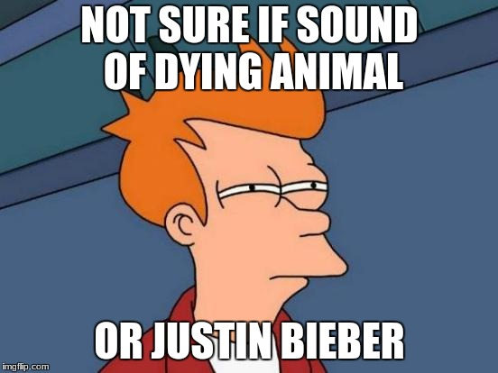 Futurama Fry Meme | NOT SURE IF SOUND OF DYING ANIMAL OR JUSTIN BIEBER | image tagged in memes,futurama fry | made w/ Imgflip meme maker