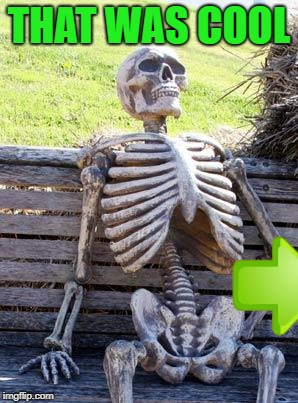Waiting Skeleton Meme | THAT WAS COOL | image tagged in memes,waiting skeleton | made w/ Imgflip meme maker