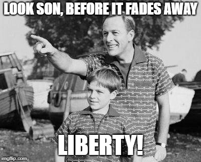 Look Son | LOOK SON, BEFORE IT FADES AWAY LIBERTY! | image tagged in memes,look son | made w/ Imgflip meme maker