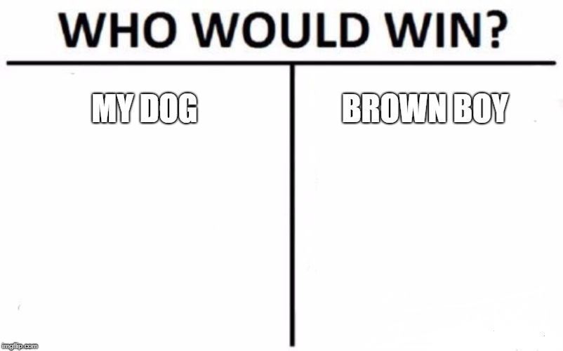 randommeme  | MY DOG BROWN BOY | image tagged in memes,who would win | made w/ Imgflip meme maker