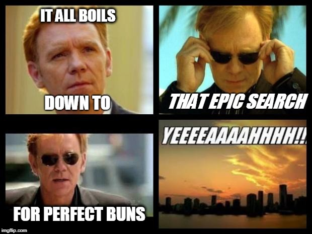 CSI | IT ALL BOILS FOR PERFECT BUNS DOWN TO THAT EPIC SEARCH | image tagged in csi | made w/ Imgflip meme maker