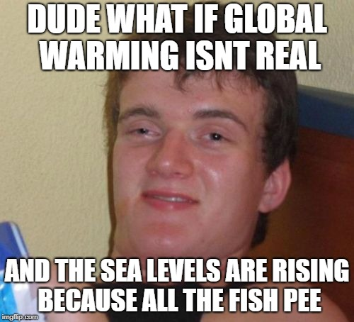 Global Warming  |  DUDE WHAT IF GLOBAL WARMING ISNT REAL; AND THE SEA LEVELS ARE RISING BECAUSE ALL THE FISH PEE | image tagged in memes,global warming,mo brooks,rocks causing global warming | made w/ Imgflip meme maker
