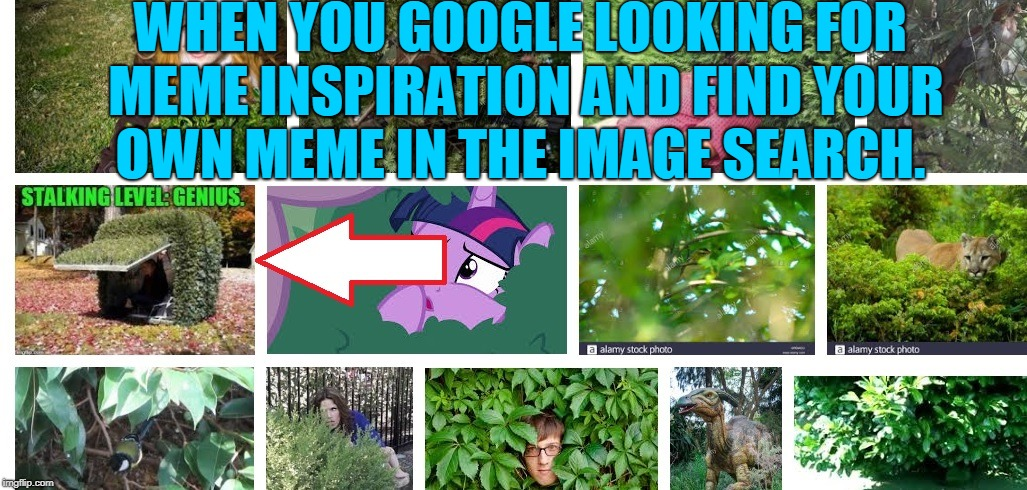 Does this count as a repost? ;) |  WHEN YOU GOOGLE LOOKING FOR MEME INSPIRATION AND FIND YOUR OWN MEME IN THE IMAGE SEARCH. | image tagged in my meme,google always knows,nixieknox,memes | made w/ Imgflip meme maker