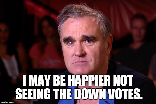 Morrisey | I MAY BE HAPPIER NOT SEEING THE DOWN VOTES. | image tagged in morrisey | made w/ Imgflip meme maker