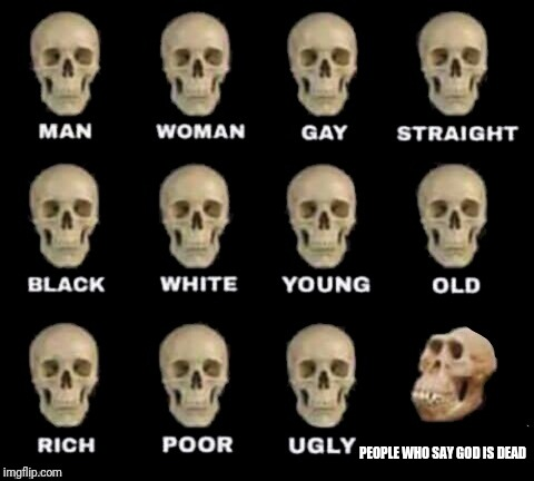 idiot skull | PEOPLE WHO SAY GOD IS DEAD | image tagged in idiot skull | made w/ Imgflip meme maker