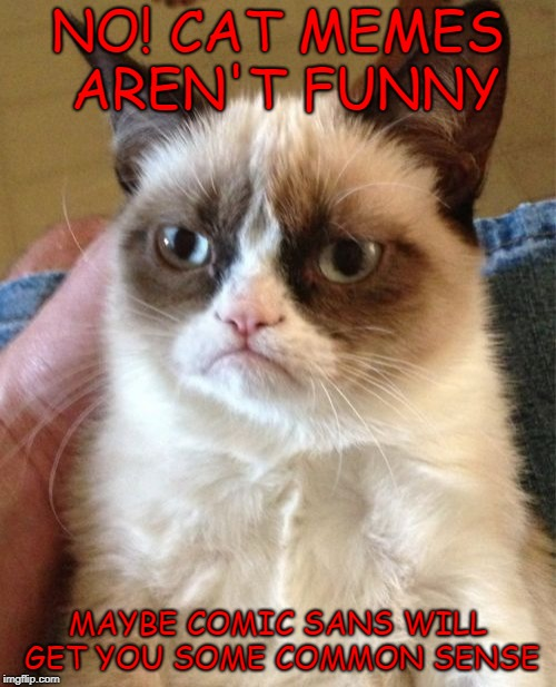 Grumpy Cat Meme | NO! CAT MEMES AREN'T FUNNY MAYBE COMIC SANS WILL GET YOU SOME COMMON SENSE | image tagged in memes,grumpy cat | made w/ Imgflip meme maker