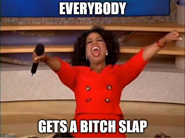 Oprah You Get A Meme | EVERYBODY GETS A B**CH SLAP | image tagged in memes,oprah you get a | made w/ Imgflip meme maker