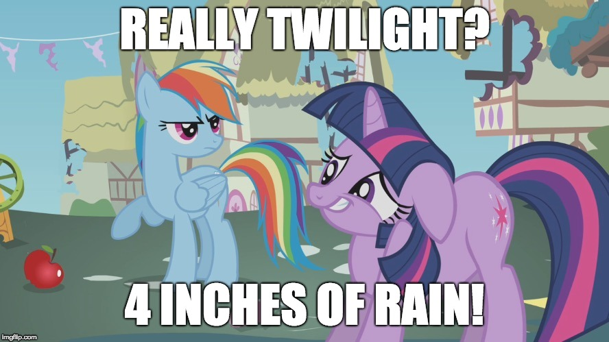 There's so much rain outside! | REALLY TWILIGHT? 4 INCHES OF RAIN! | image tagged in really twilight,memes,rain,my little pony | made w/ Imgflip meme maker