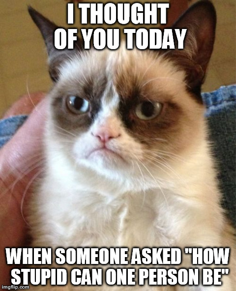 "Grumpy Cat | I THOUGHT OF YOU TODAY WHEN SOMEONE ASKED ""HOW STUPID CAN ONE PERSON BE"" 