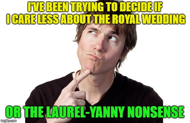 what to do today? | I'VE BEEN TRYING TO DECIDE IF I CARE LESS ABOUT THE ROYAL WEDDING OR THE LAUREL-YANNY NONSENSE | image tagged in memes,funny,see nobody cares | made w/ Imgflip meme maker