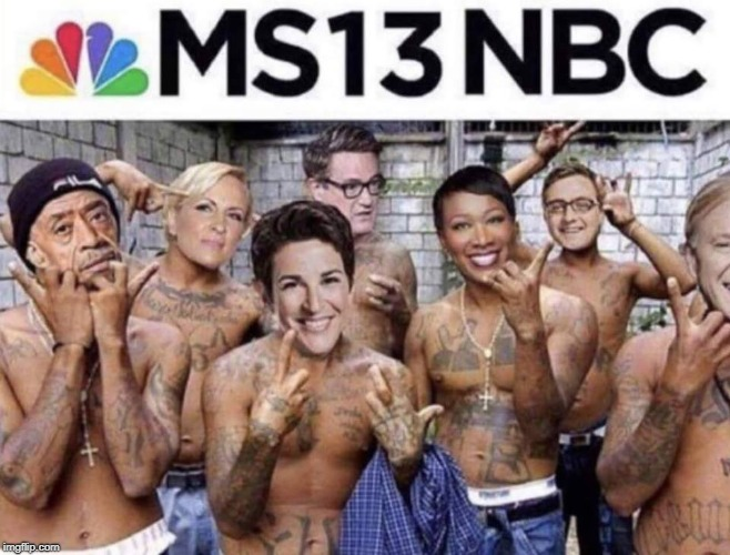 vatos locos ese | MS13NBC | image tagged in ms13,msnbc,mexican gang members,animals,memes | made w/ Imgflip meme maker