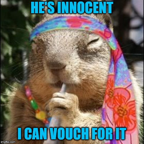 HE'S INNOCENT I CAN VOUCH FOR IT | made w/ Imgflip meme maker