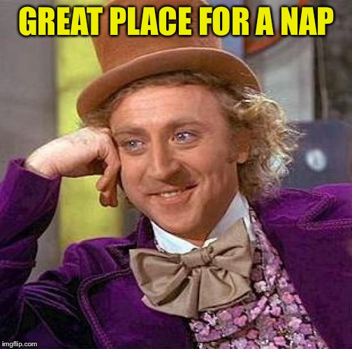 Creepy Condescending Wonka Meme | GREAT PLACE FOR A NAP | image tagged in memes,creepy condescending wonka | made w/ Imgflip meme maker