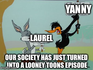 YANNY LAUREL OUR SOCIETY HAS JUST TURNED INTO A LOONEY TOONS EPISODE | image tagged in duck season | made w/ Imgflip meme maker