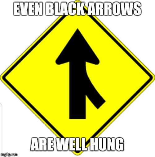 EVEN BLACK ARROWS ARE WELL HUNG | image tagged in black arrow | made w/ Imgflip meme maker