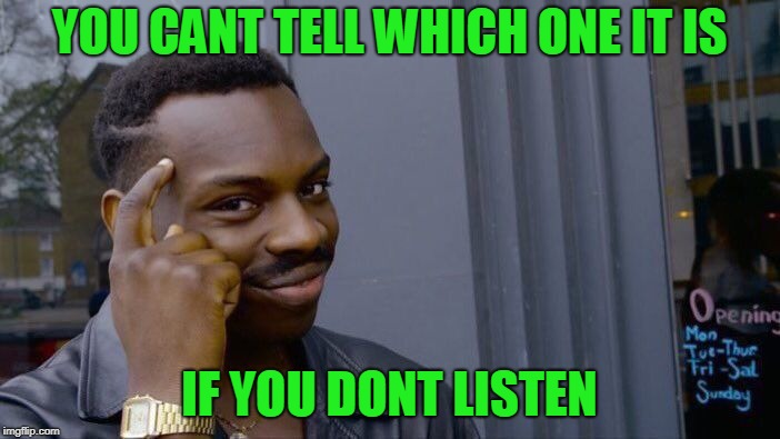 Roll Safe Think About It Meme | YOU CANT TELL WHICH ONE IT IS IF YOU DONT LISTEN | image tagged in memes,roll safe think about it | made w/ Imgflip meme maker