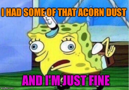 Mocking Spongebob Meme | I HAD SOME OF THAT ACORN DUST AND I'M JUST FINE | image tagged in memes,mocking spongebob | made w/ Imgflip meme maker
