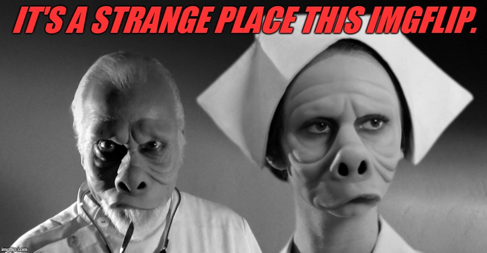 twilight zone | IT'S A STRANGE PLACE THIS IMGFLIP. | image tagged in twilight zone | made w/ Imgflip meme maker