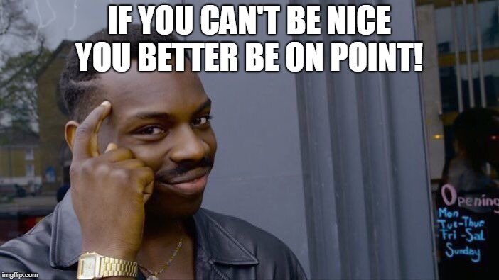 Roll Safe Think About It Meme | IF YOU CAN'T BE NICE YOU BETTER BE ON POINT! | image tagged in memes,roll safe think about it | made w/ Imgflip meme maker
