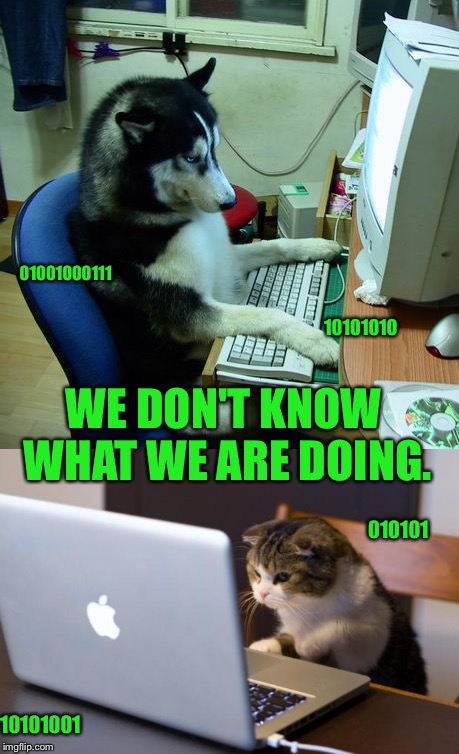 Computer pets | WE DON'T KNOW WHAT WE ARE DOING. 10101010 010101 10101001 01001000111 | image tagged in meme | made w/ Imgflip meme maker
