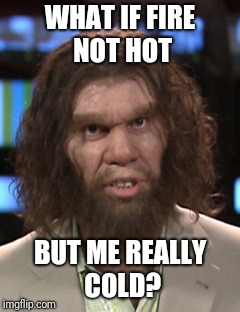 WHAT IF FIRE NOT HOT BUT ME REALLY COLD? | image tagged in sudden clarity caveman | made w/ Imgflip meme maker