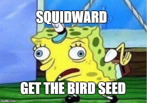 Mocking Spongebob Meme | SQUIDWARD GET THE BIRD SEED | image tagged in memes,mocking spongebob | made w/ Imgflip meme maker