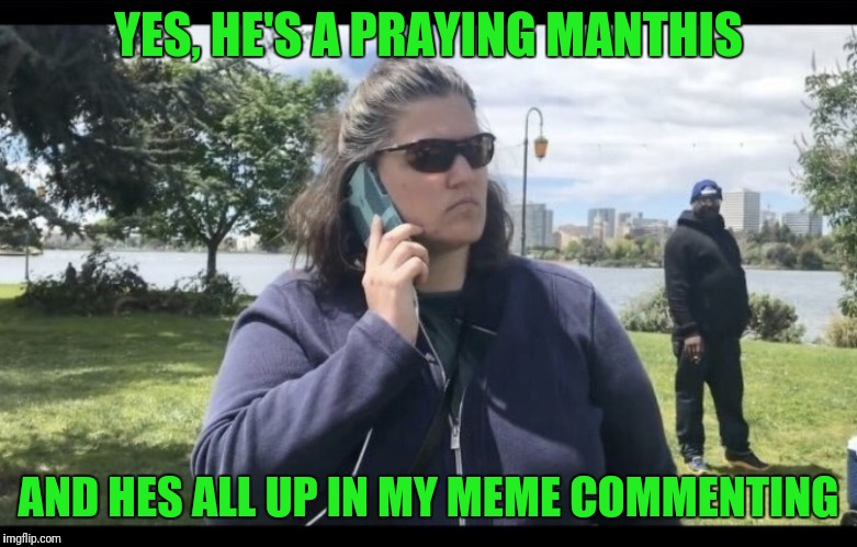 YES, HE'S A PRAYING MANTHIS AND HES ALL UP IN MY MEME COMMENTING | made w/ Imgflip meme maker