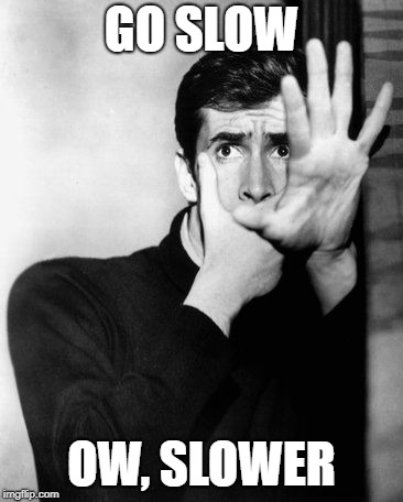 psycho | GO SLOW OW, SLOWER | image tagged in psycho | made w/ Imgflip meme maker