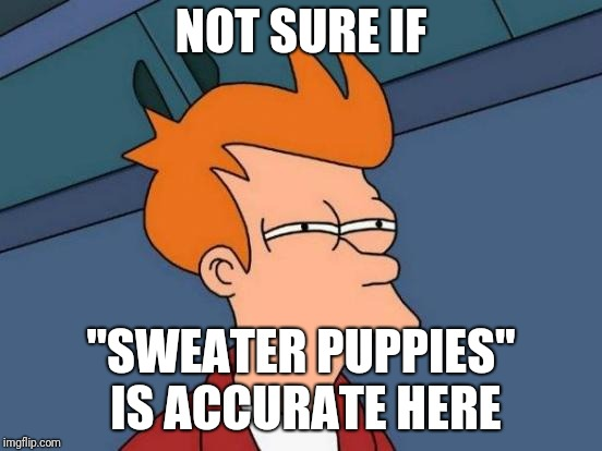 "Futurama Fry Meme | NOT SURE IF ""SWEATER PUPPIES"" IS ACCURATE HERE 