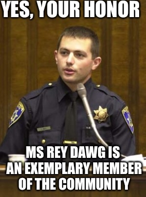 YES, YOUR HONOR MS REY DAWG IS AN EXEMPLARY MEMBER OF THE COMMUNITY | made w/ Imgflip meme maker