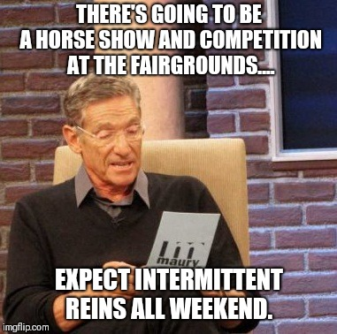 When it reins.... | THERE'S GOING TO BE A HORSE SHOW AND COMPETITION AT THE FAIRGROUNDS.... EXPECT INTERMITTENT REINS ALL WEEKEND. | image tagged in memes,maury lie detector,original meme,original,original memes | made w/ Imgflip meme maker