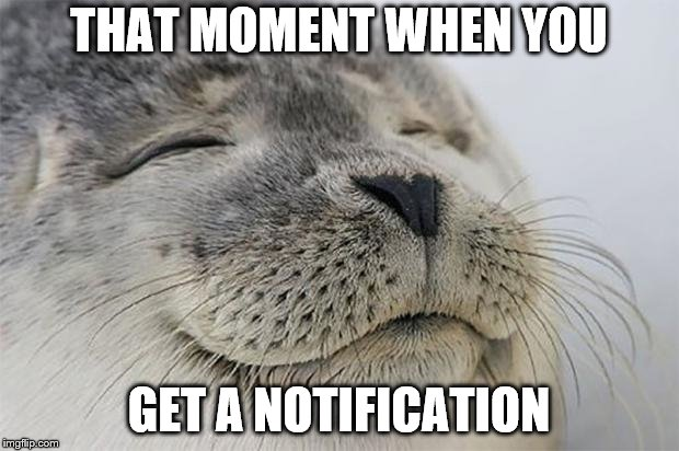 Satisfied Seal Meme | THAT MOMENT WHEN YOU GET A NOTIFICATION | image tagged in memes,satisfied seal | made w/ Imgflip meme maker