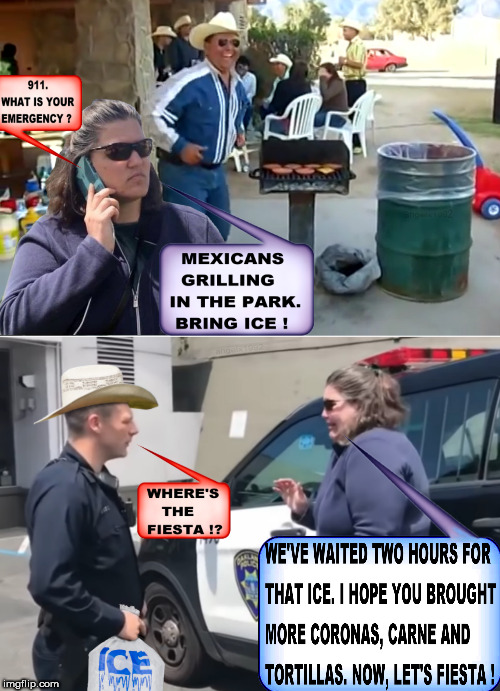 image tagged in bbq,becky,jennifer,park,mexicans,ice | made w/ Imgflip meme maker