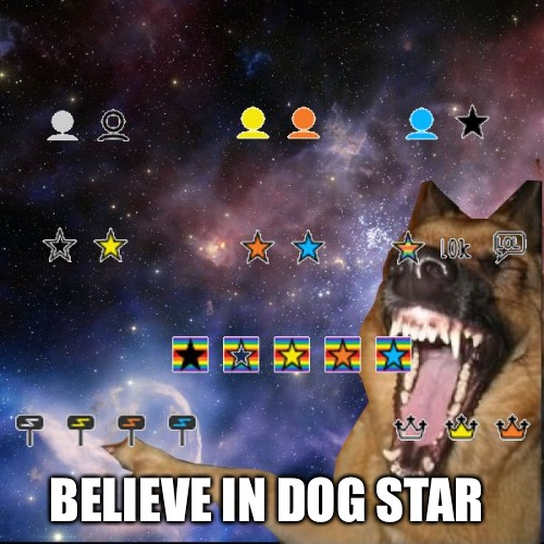icons lol | BELIEVE IN DOG STAR | image tagged in icons lol | made w/ Imgflip meme maker