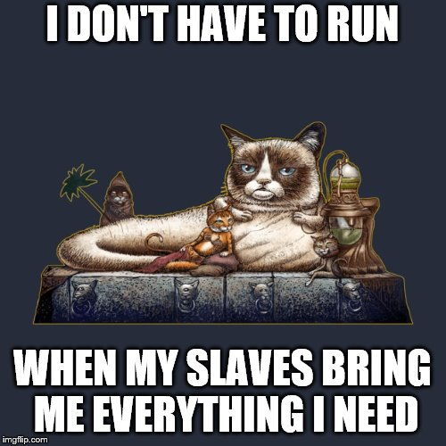 I DON'T HAVE TO RUN WHEN MY SLAVES BRING ME EVERYTHING I NEED | made w/ Imgflip meme maker
