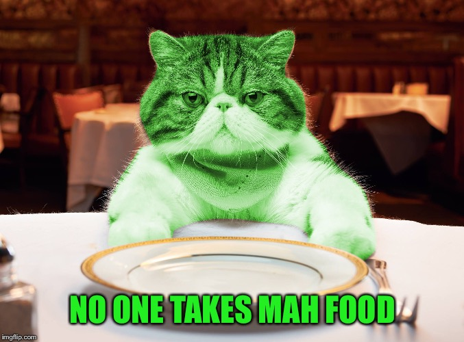 RayCat Hungry | NO ONE TAKES MAH FOOD | image tagged in raycat hungry | made w/ Imgflip meme maker