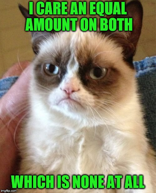 Grumpy Cat Meme | I CARE AN EQUAL AMOUNT ON BOTH WHICH IS NONE AT ALL | image tagged in memes,grumpy cat | made w/ Imgflip meme maker