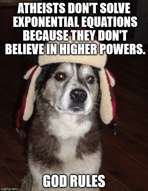 Philosopher dog, great point | ATHEISTS DON'T SOLVE EXPONENTIAL EQUATIONS BECAUSE THEY DON'T BELIEVE IN HIGHER POWERS. GOD RULES | image tagged in hunting dog,thinking,memes,math,play on words | made w/ Imgflip meme maker