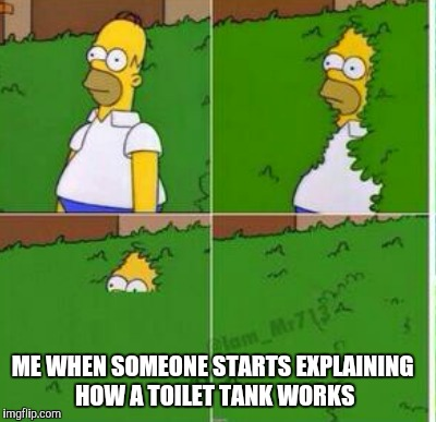Homer hides | ME WHEN SOMEONE STARTS EXPLAINING HOW A TOILET TANK WORKS | image tagged in homer bush,homer simpson in bush - large | made w/ Imgflip meme maker