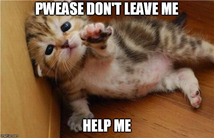 PWEASE DON'T LEAVE ME HELP ME | made w/ Imgflip meme maker