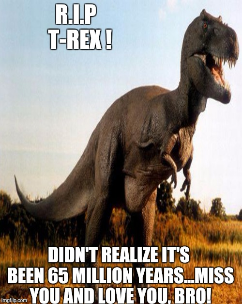 Time slips away... | R.I.P  T-REX ! DIDN'T REALIZE IT'S BEEN 65 MILLION YEARS...MISS YOU AND LOVE YOU, BRO! | image tagged in dinosaur,funny,rip,t rex,memorial | made w/ Imgflip meme maker