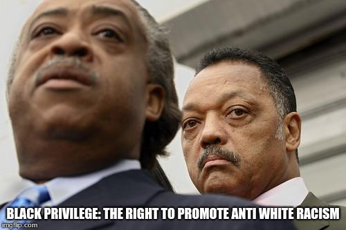Al Sharpton and Jesse Jackson are not amused | BLACK PRIVILEGE: THE RIGHT TO PROMOTE ANTI WHITE RACISM | image tagged in al sharpton and jesse jackson are not amused | made w/ Imgflip meme maker
