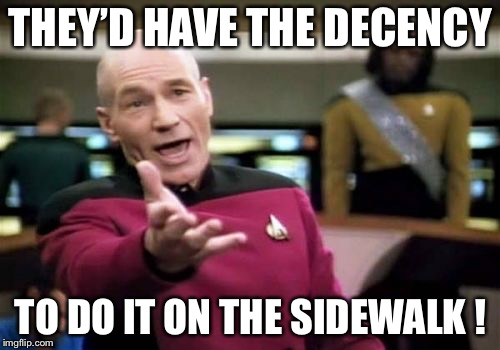 Picard Wtf Meme | THEY'D HAVE THE DECENCY TO DO IT ON THE SIDEWALK ! | image tagged in memes,picard wtf | made w/ Imgflip meme maker