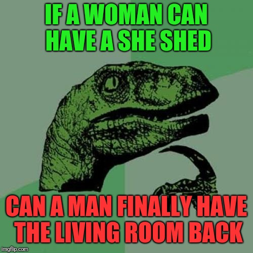 A man wants the living room back | IF A WOMAN CAN HAVE A SHE SHED CAN A MAN FINALLY HAVE THE LIVING ROOM BACK | image tagged in memes,philosoraptor,married | made w/ Imgflip meme maker
